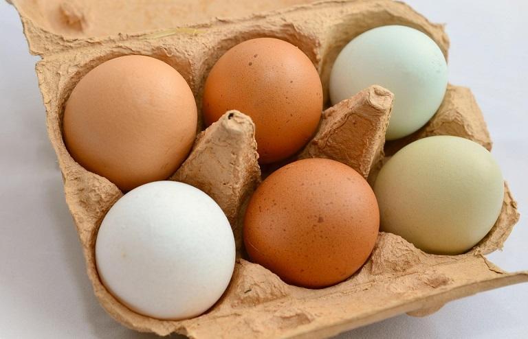 نرخ یک شانه تخم مرغ 16 هزار تومان است