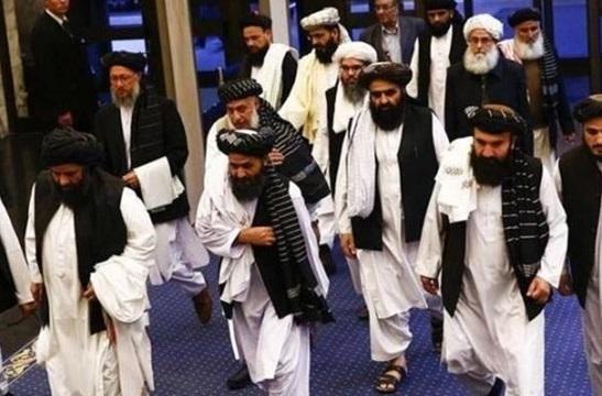 طالبان هرگونه همکاری با القاعده را تکذیب کرد
